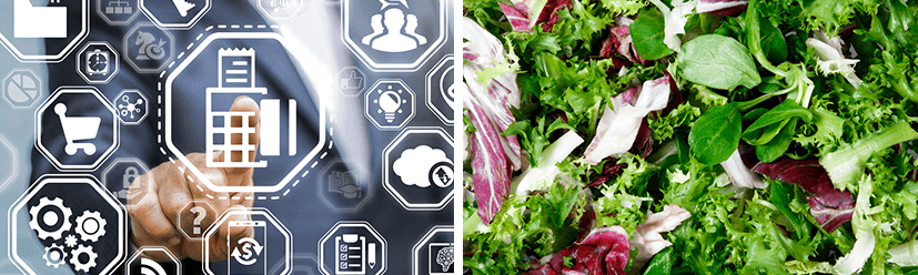 Technology Investments and Healthy Menus Driving Restaurant Growth
